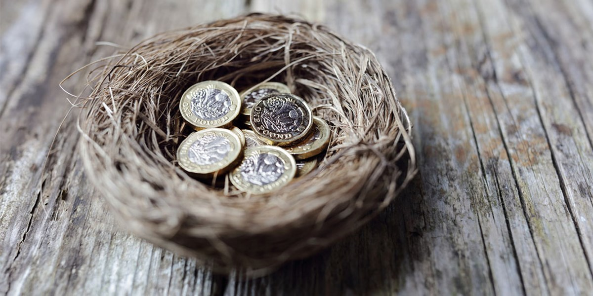 Nest with pound coins in it